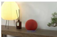 亚马逊推出特别版ECHO红色智能音箱